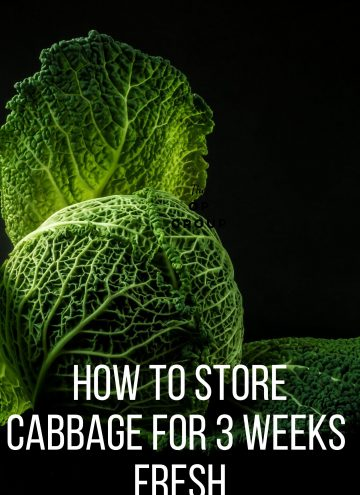 how to store cabbage